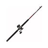 Penn Defiance Combo Rod and Conventional Reel Combo