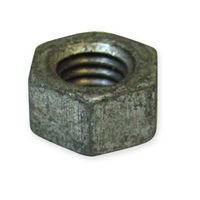 Galvanized Hex Nuts