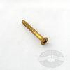 #6 Brass Wood Screws Oval Phillips Head