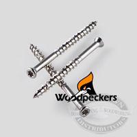 316 SS 6-Lobe Woodpecker Finishing Screws