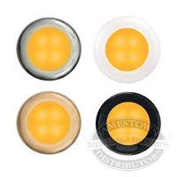 Hella Amber Slim Line Round LED Courtesy Lamps