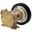 Jabsco Flexible Impeller Clutch Pump
