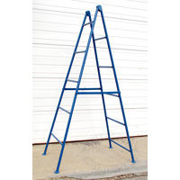Brownell boat staging ladders