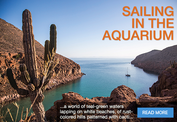 Classic Boat Magazine June 2020: Sea of Cortez - Sailing in the Aquarium