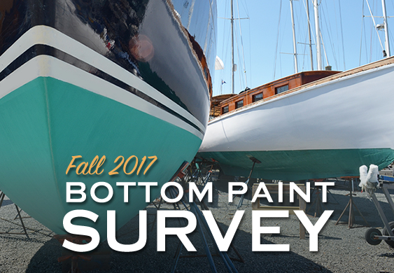 What Bottom Paint Did You Use This Year?