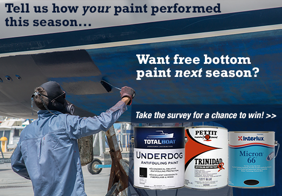Bottom Paint Survey