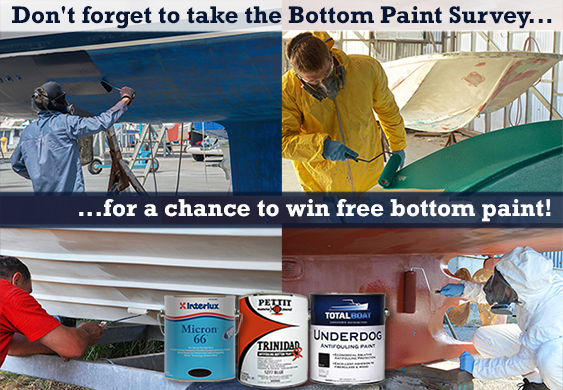 Bottom Paint Survey