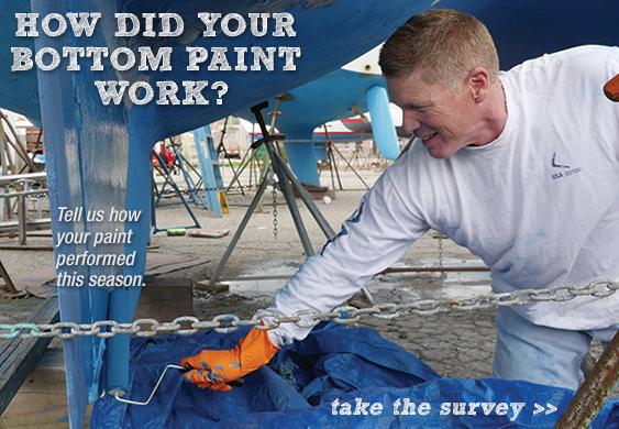 Bottom Paint Surveyr
