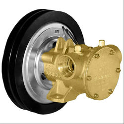 Jabsco Flexible Impeller Clutch Pump