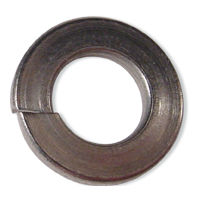 S/S Lock Washers