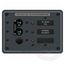 Blue Sea Systems AC Main & 1 Position Panel